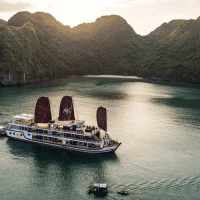 orchid cruise-vietflametours