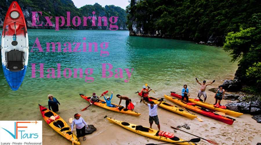 flamingo cruise with kayaking tour