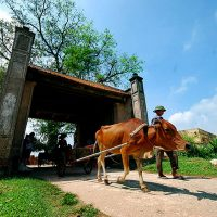 Duong-Lam-Ancient-Village-vietflametours