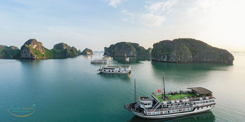 Swan Cruises in Bai Tu Long Bay- Halong Bay- Vietnam